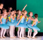 www.ballettschule-borntraeger.de
