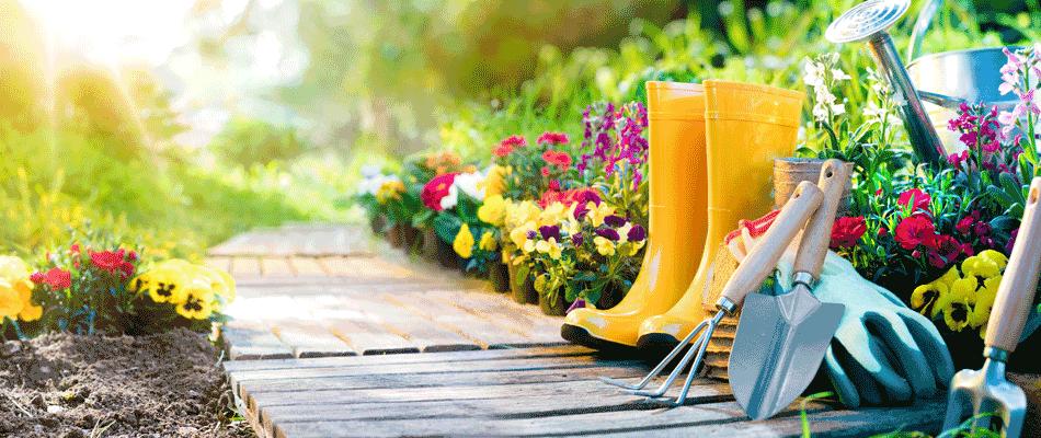 Den Garten frühlingsfit machen